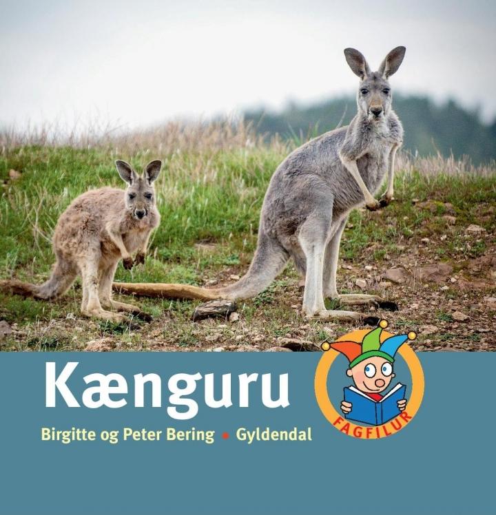 Bogforside Kænguru